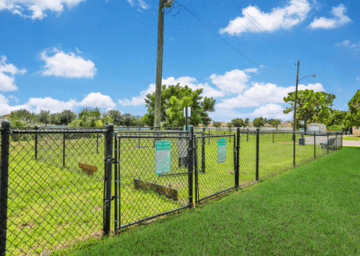 View of Dog Park and Fence